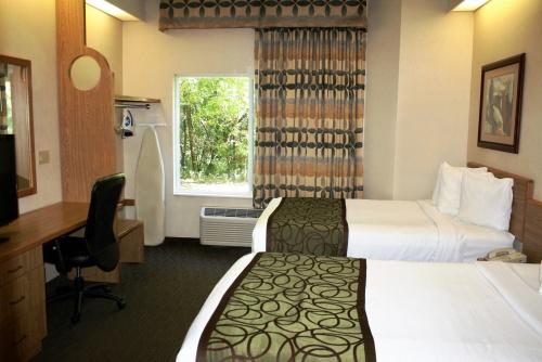 Two Queen Beds - 1